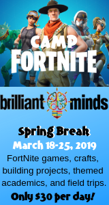 Fortnite Brilliant Minds
