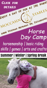 Moccasin Stables Camps section