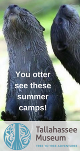 Tallahassee Museum Summer Camp