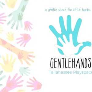 Gentle Hands Tallahassee Playspace